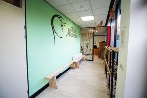 aerial-yoga-studio